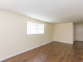 1021-E-Crenshaw-Old-Seminole-Heights-for-Sale-Dining-Area