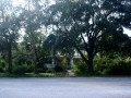438-E-Davis-Front-side-Davis-Islands-Lot-for-Sale1