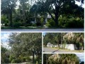 438-E-Davis-Lot-for-Sale-Davis-Islands