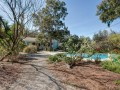 105-Huron-Ave-Home-on-Davis-Islands-Real-Estate-Backyard-Fadal